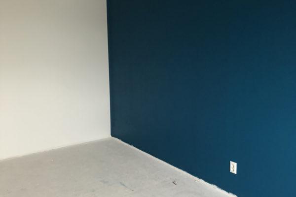 Accent-kleur-woonkamermuur-woning-1